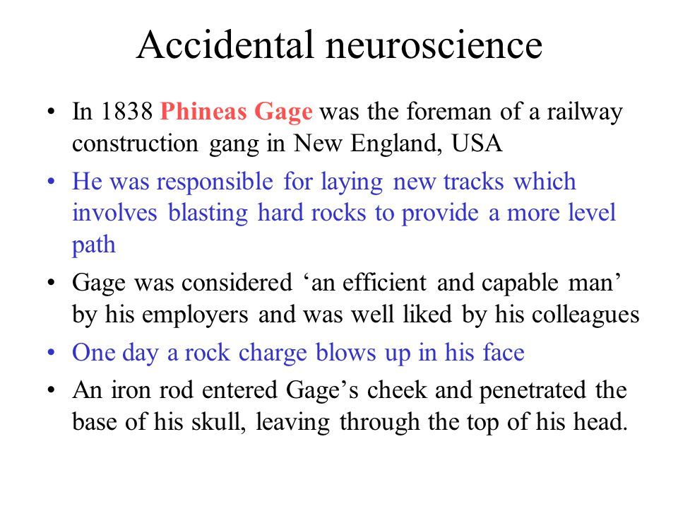 Accidental neuroscience In 1838 Phineas Gage was the foreman of a railway construction gang in New England, USA He was responsible for laying new tracks which involves blasting hard rocks to provide a more level path Gage was considered 'an efficient and capable man' by his employers and was well liked by his colleagues One day a rock charge blows up in his face An iron rod entered Gage's cheek and penetrated the base of his skull, leaving through the top of his head.