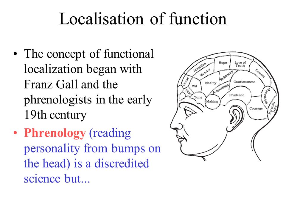 Localisation of function The concept of functional localization began with Franz Gall and the phrenologists in the early 19th century Phrenology (reading personality from bumps on the head) is a discredited science but...