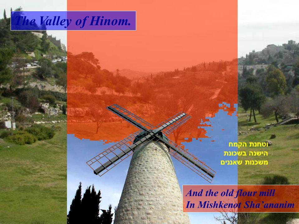Panoramic view towards the new city, From Yad Vashem. מבט מיד ושם אל שכונות העיר העברית החדשה.