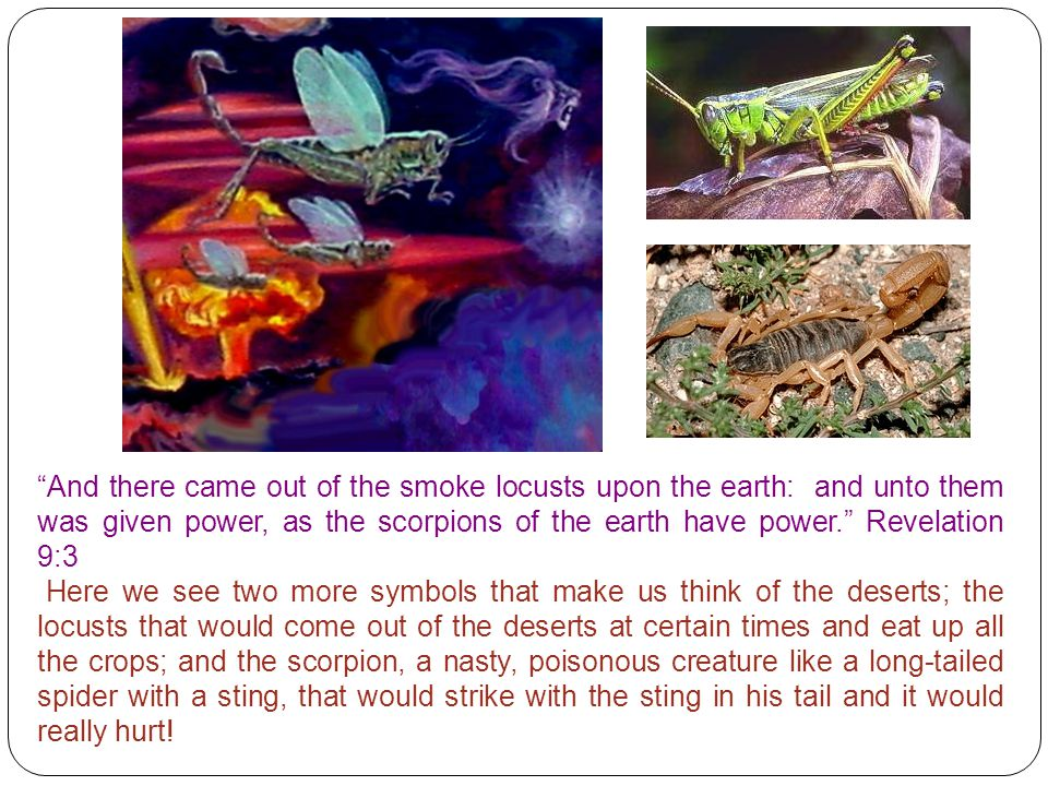 """And there came out of the smoke locusts upon the earth: and unto them was given power, as the scorpions of the earth have power."" Revelation 9:3 Here"