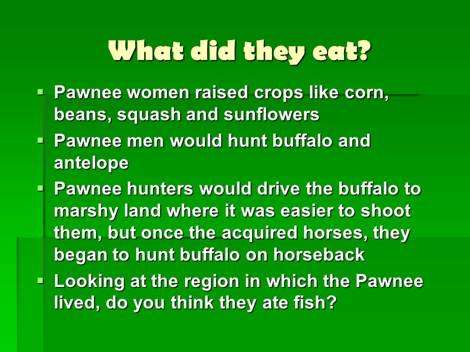 What did they eat?  Pawnee women raised crops like corn, beans, squash and sunflowers  Pawnee men would hunt buffalo and antelope  Pawnee hunters w
