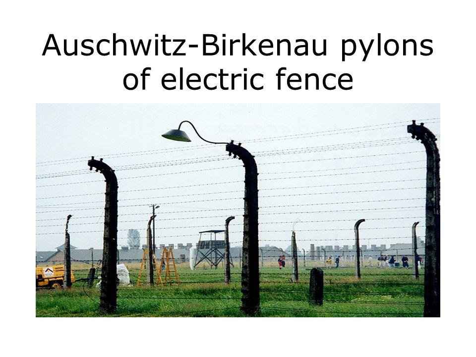 Auschwitz-Birkenau pylons of electric fence
