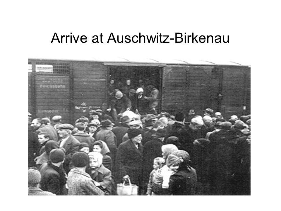 Arrive at Auschwitz-Birkenau