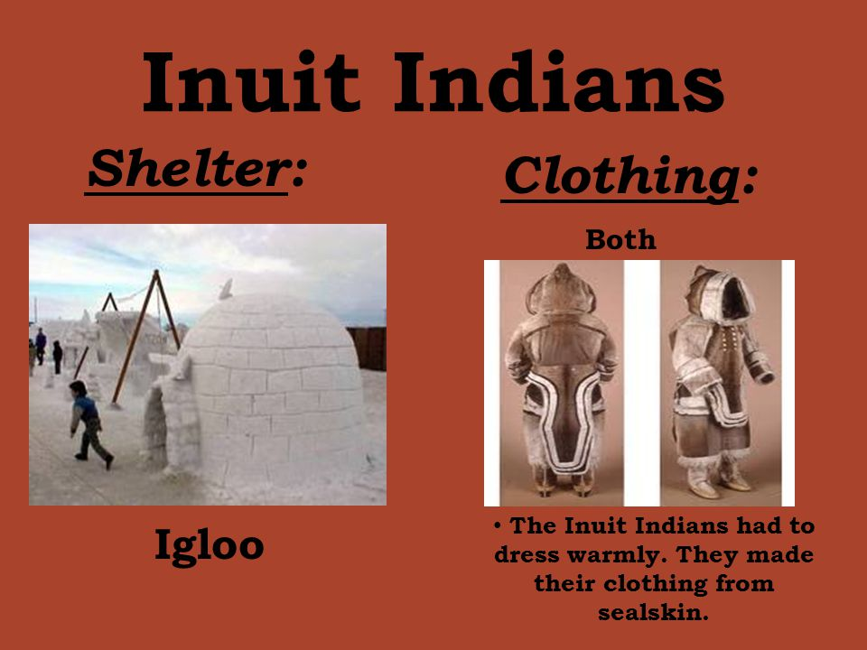 Inuit Indians Shelter: Clothing: Igloo Both The Inuit Indians had to dress warmly. They made their clothing from sealskin.