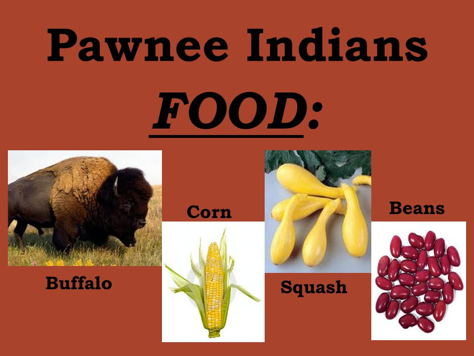 Pawnee Indians Shelter: Clothing: Teepee Earth Lodge MenWomen Breechcloth and leggings from animal skin like deerskin.