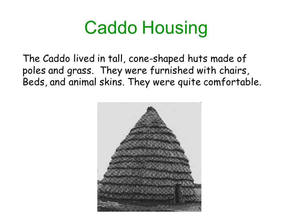 Caddo Housing The Caddo lived in tall, cone-shaped huts made of poles and grass.