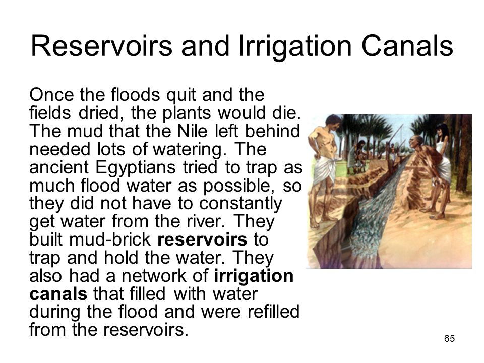 65 Reservoirs and Irrigation Canals Once the floods quit and the fields dried, the plants would die.