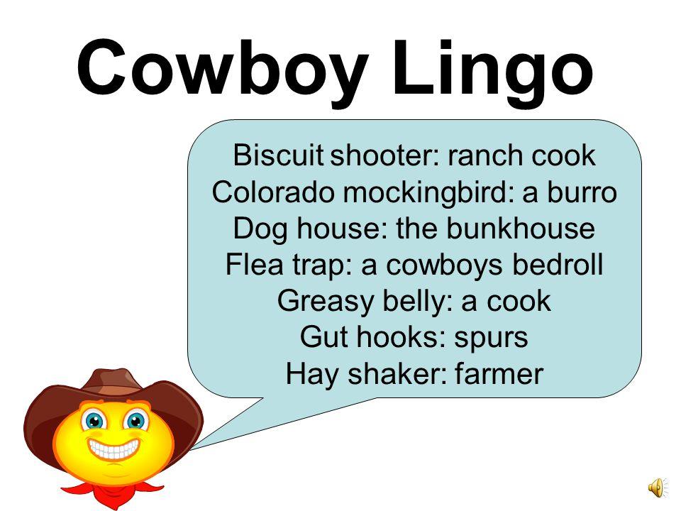 Cowboy Lingo Cowboy Lingo was a special way of talking between cowboys.