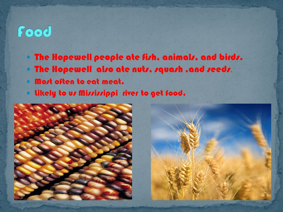 The Hopewell people ate fish, animals, and birds. The Hopewell also ate nuts, squash,and seeds.