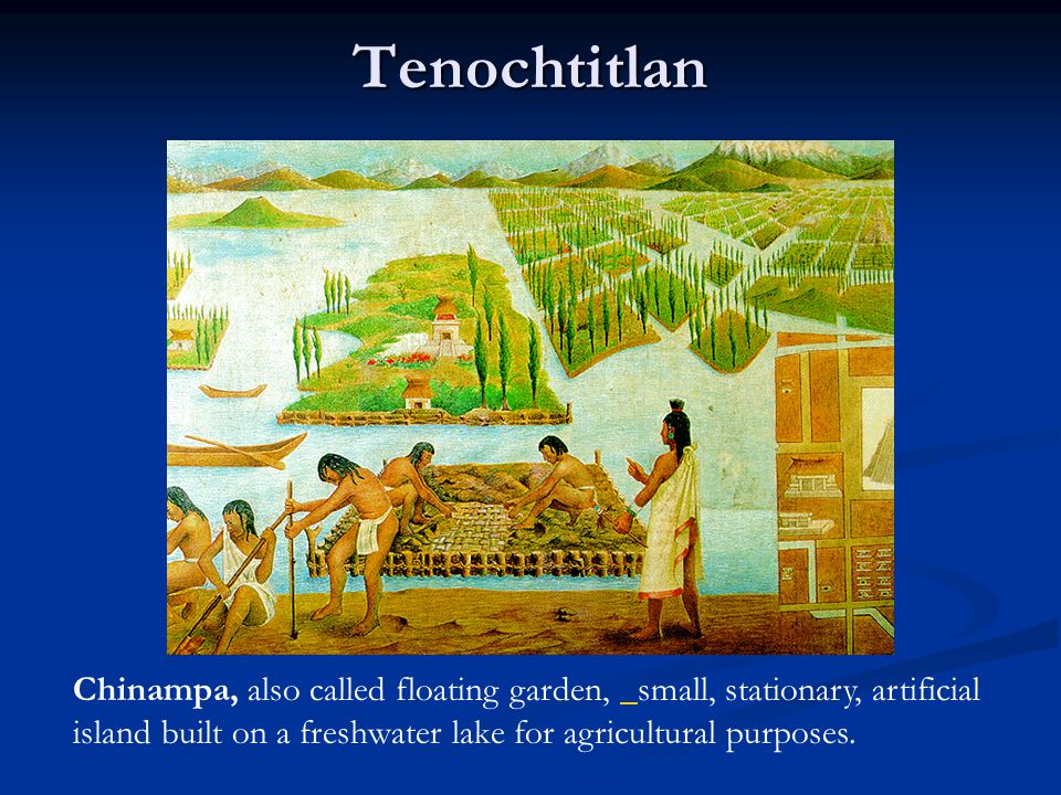Tenochtitlan Chinampa, also called floating garden, small, stationary, artificial island built on a freshwater lake for agricultural purposes.