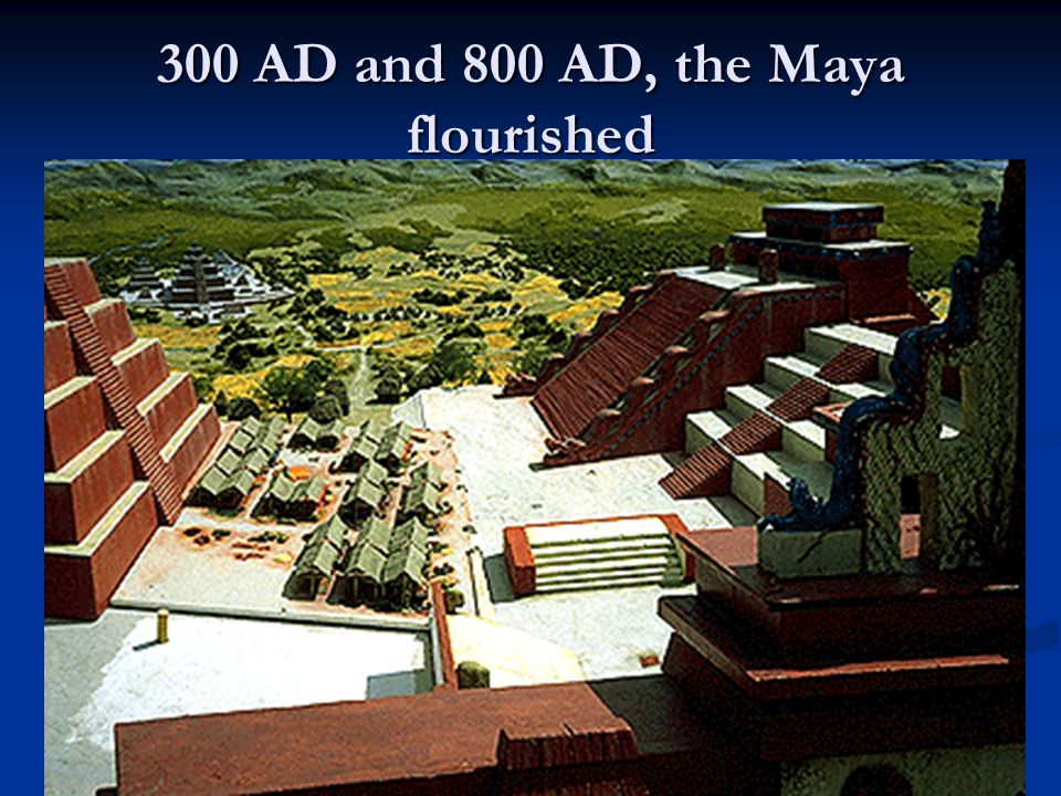 300 AD and 800 AD, the Maya flourished