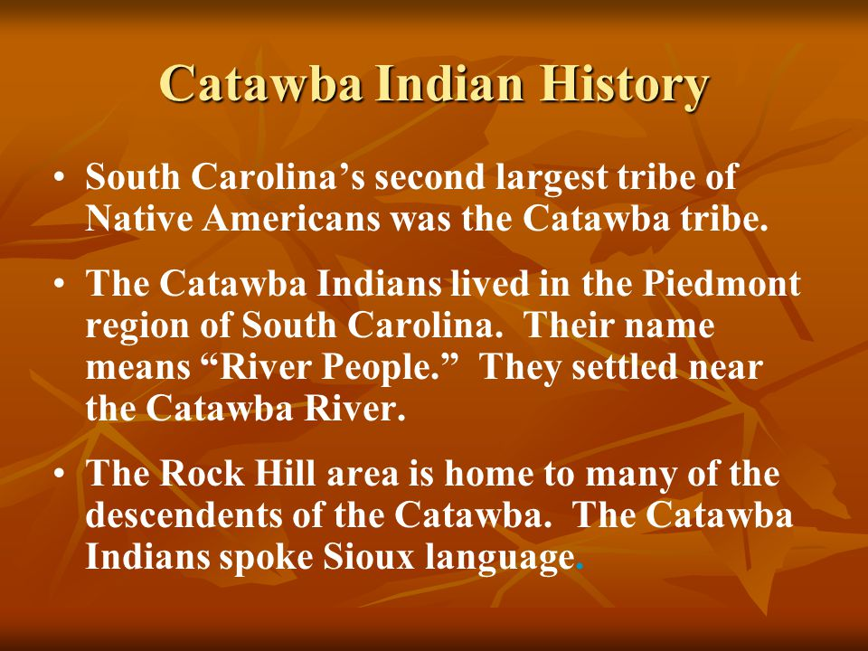 Catawba Indian History South Carolina's second largest tribe of Native Americans was the Catawba tribe. The Catawba Indians lived in the Piedmont regi