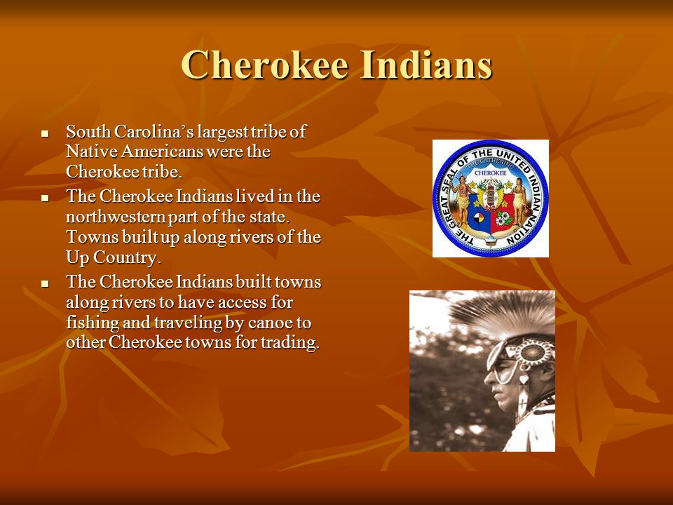 Cherokee Indians South Carolina's largest tribe of Native Americans were the Cherokee tribe. South Carolina's largest tribe of Native Americans were t