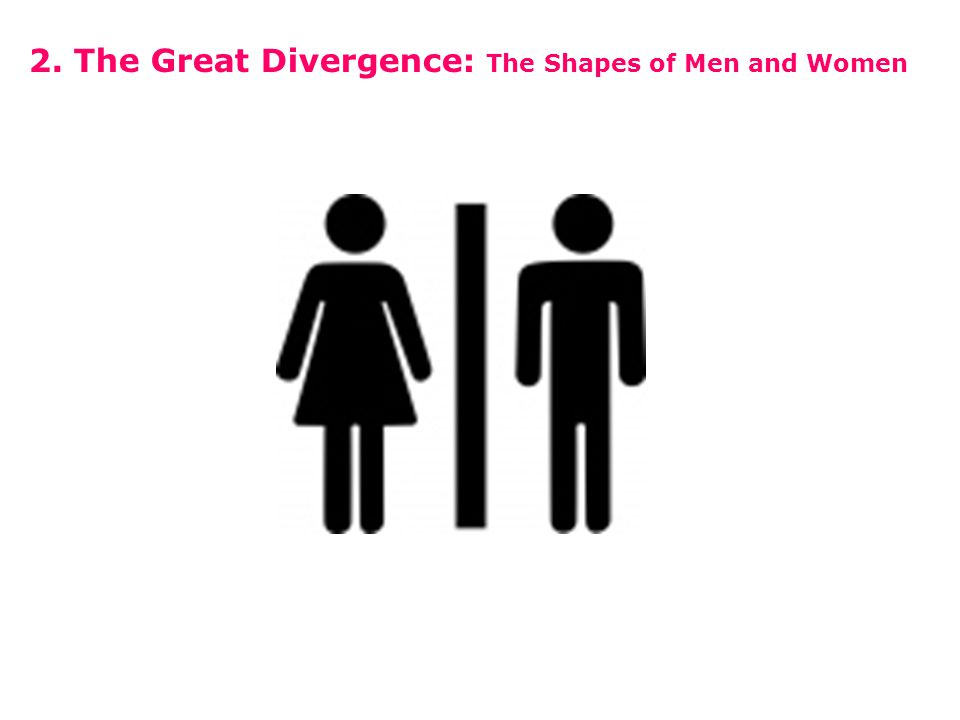 2. The Great Divergence: The Shapes of Men and Women