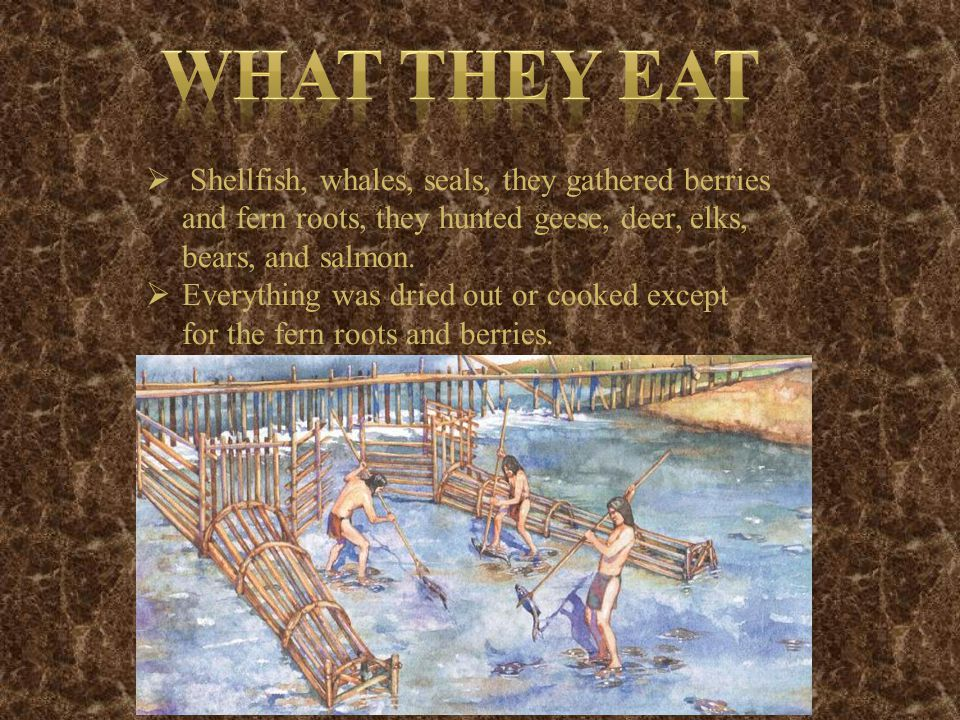 Shellfish, whales, seals, they gathered berries and fern roots, they hunted geese, deer, elks, bears, and salmon.