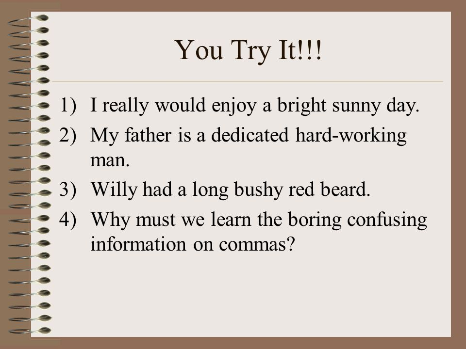 You Try It!!! 1)I really would enjoy a bright sunny day. 2)My father is a dedicated hard-working man. 3)Willy had a long bushy red beard. 4)Why must w