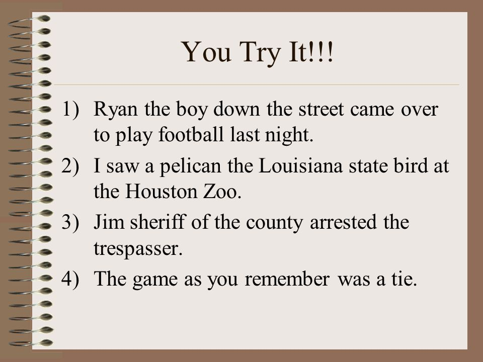 You Try It!!! 1)Ryan the boy down the street came over to play football last night. 2)I saw a pelican the Louisiana state bird at the Houston Zoo. 3)J