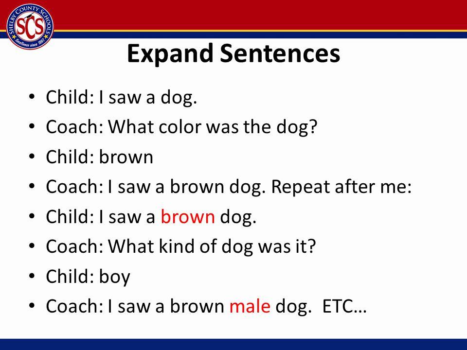 Expand Sentences Child: I saw a dog. Coach: What color was the dog? Child: brown Coach: I saw a brown dog. Repeat after me: Child: I saw a brown dog.