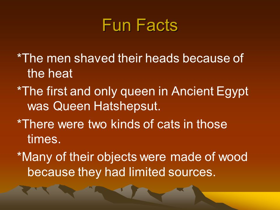 Fun Facts *The men shaved their heads because of the heat *The first and only queen in Ancient Egypt was Queen Hatshepsut. *There were two kinds of ca