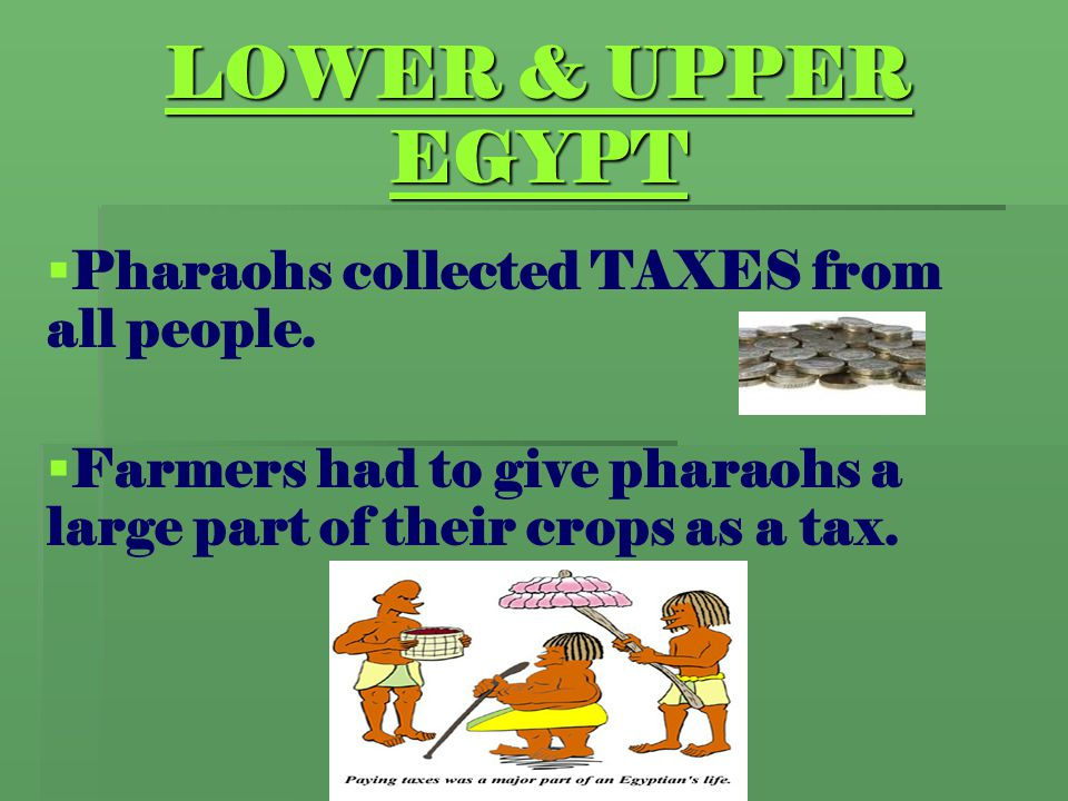 LOWER & UPPER EGYPT   Pharaohs collected TAXES from all people.   Farmers had to give pharaohs a large part of their crops as a tax.