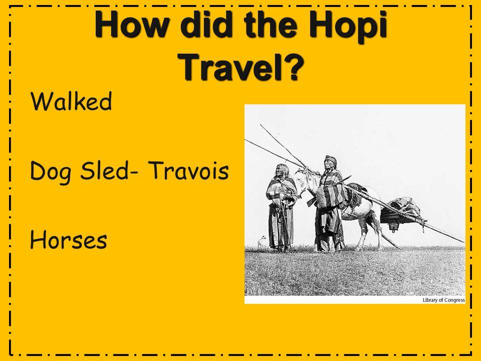 How did the Hopi Travel? Walked Dog Sled- Travois Horses