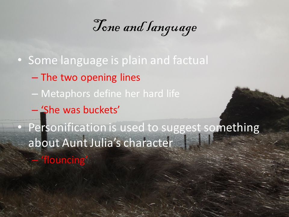 Tone and language Some language is plain and factual – The two opening lines – Metaphors define her hard life – 'She was buckets' Personification is used to suggest something about Aunt Julia's character – 'flouncing'