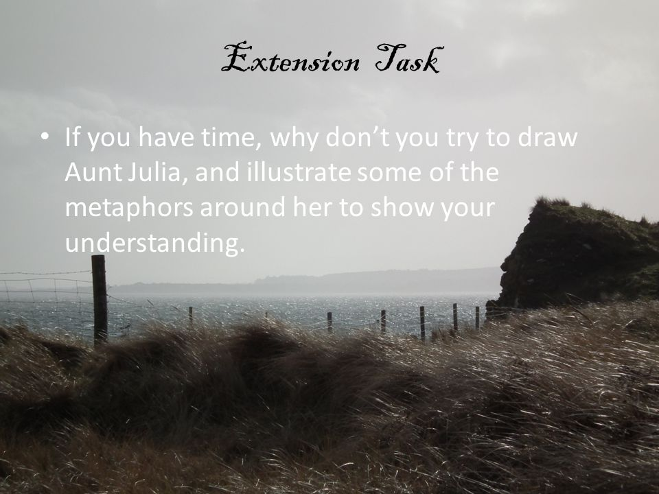 Extension Task If you have time, why don't you try to draw Aunt Julia, and illustrate some of the metaphors around her to show your understanding.