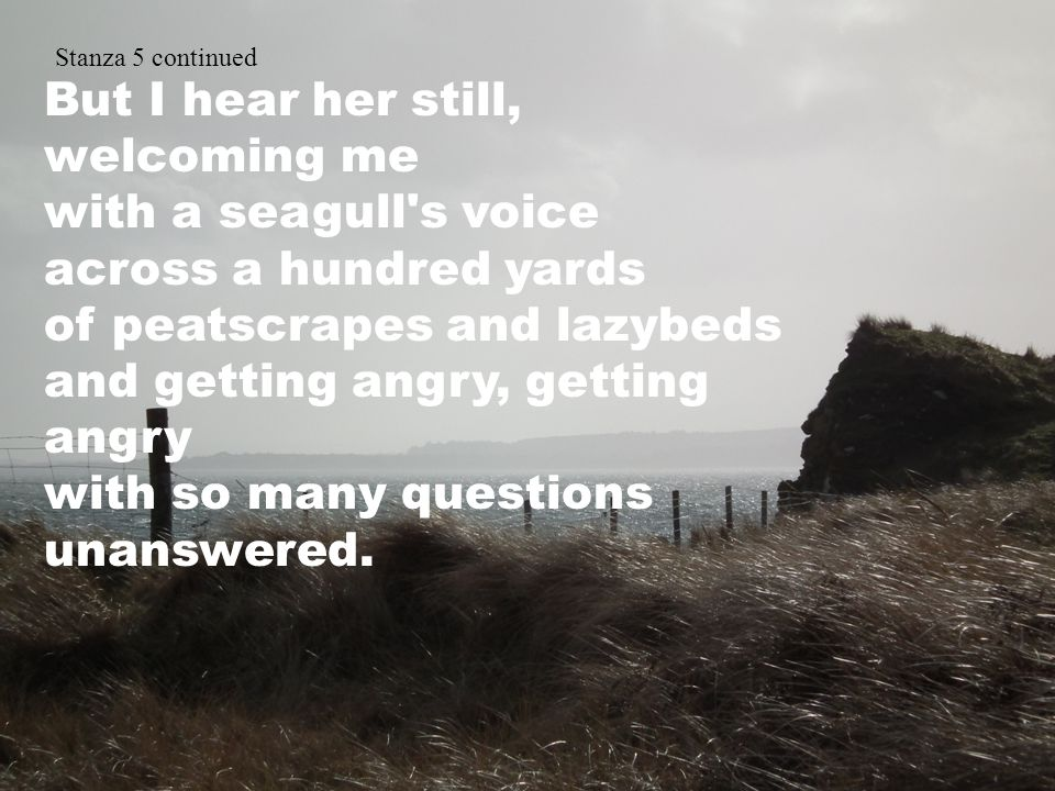 Stanza 5 continued But I hear her still, welcoming me with a seagull s voice across a hundred yards of peatscrapes and lazybeds and getting angry, getting angry with so many questions unanswered.