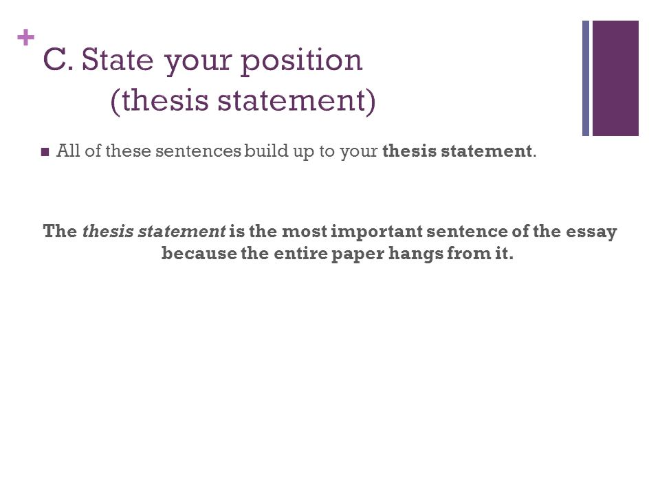 + All of these sentences build up to your thesis statement.