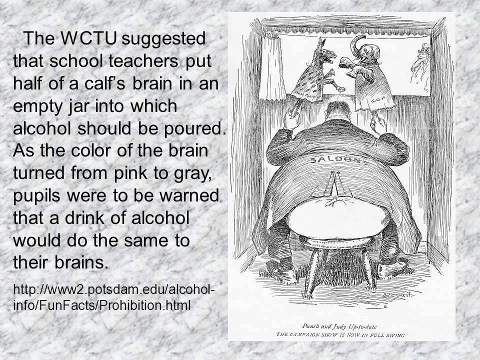 The WCTU suggested that school teachers put half of a calf's brain in an empty jar into which alcohol should be poured.