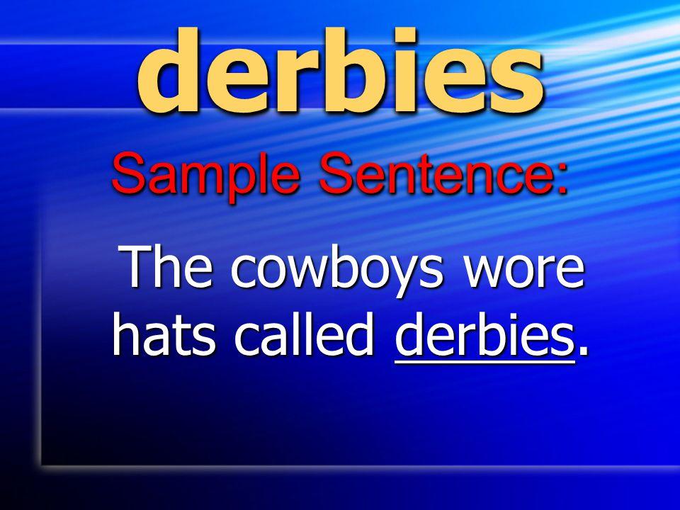derbiesderbies Sample Sentence: The cowboys wore hats called derbies.