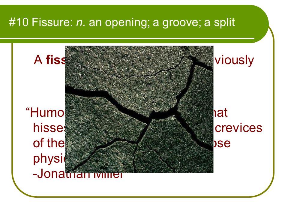 #10 Fissure: n.