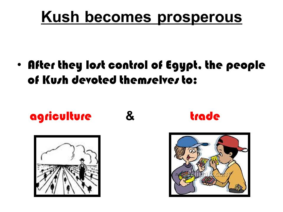Kush becomes prosperous After they lost control of Egypt, the people of Kush devoted themselves to: agriculture & trade