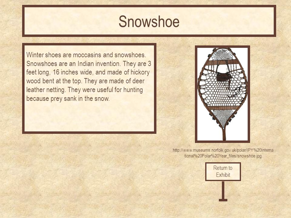 http://www.museums.norfolk.gov.uk/polar/IPY%20Interna tional%20Polar%20Year_files/snowshoe.jpg Winter shoes are moccasins and snowshoes.