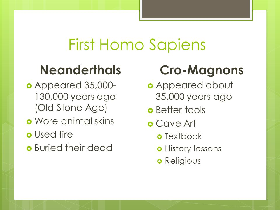 First Homo Sapiens Neanderthals  Appeared 35,000- 130,000 years ago (Old Stone Age)  Wore animal skins  Used fire  Buried their dead Cro-Magnons  Appeared about 35,000 years ago  Better tools  Cave Art  Textbook  History lessons  Religious