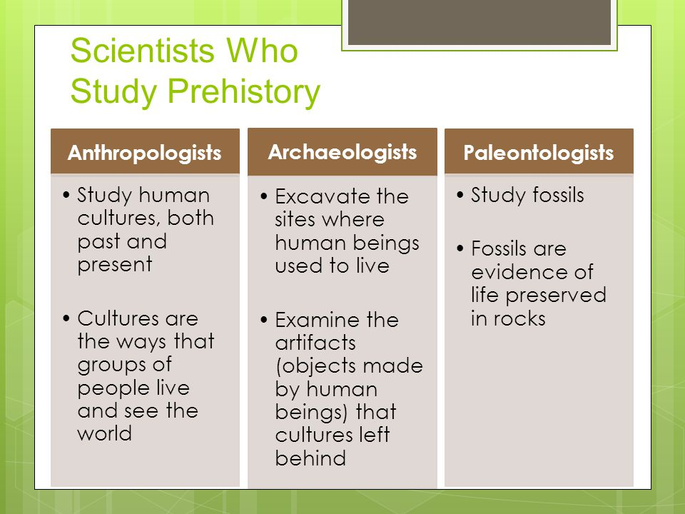 Scientists Who Study Prehistory Anthropologists Study human cultures, both past and present Cultures are the ways that groups of people live and see the world Archaeologists Excavate the sites where human beings used to live Examine the artifacts (objects made by human beings) that cultures left behind Paleontologists Study fossils Fossils are evidence of life preserved in rocks