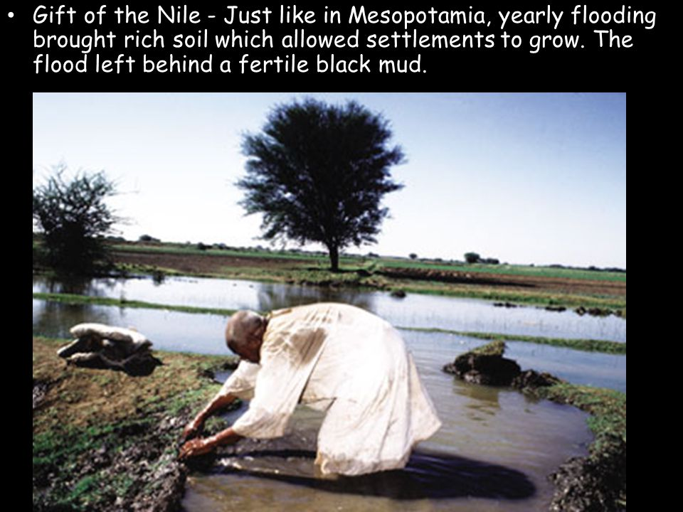 Gift of the Nile - Just like in Mesopotamia, yearly flooding brought rich soil which allowed settlements to grow. The flood left behind a fertile blac