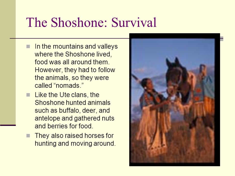 The Shoshone: Survival In the mountains and valleys where the Shoshone lived, food was all around them. However, they had to follow the animals, so th