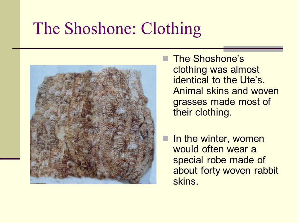 The Shoshone: Clothing The Shoshone's clothing was almost identical to the Ute's. Animal skins and woven grasses made most of their clothing. In the w
