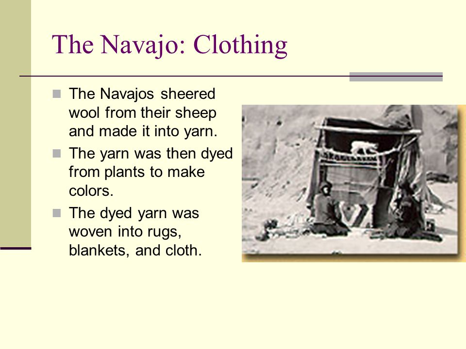 The Navajo: Clothing The Navajos sheered wool from their sheep and made it into yarn. The yarn was then dyed from plants to make colors. The dyed yarn