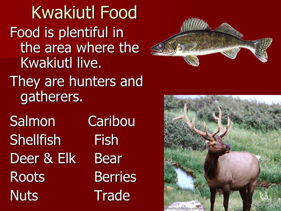 Kwakiutl Food Food is plentiful in the area where the Kwakiutl live. They are hunters and gatherers. Salmon Caribou Shellfish Fish Deer & ElkBear Root