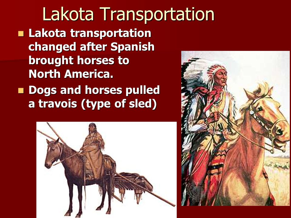 Lakota Transportation Lakota transportation changed after Spanish brought horses to North America. Lakota transportation changed after Spanish brought