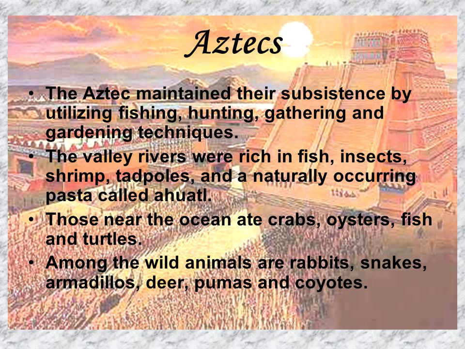 Aztecs The Aztec maintained their subsistence by utilizing fishing, hunting, gathering and gardening techniques. The valley rivers were rich in fish,