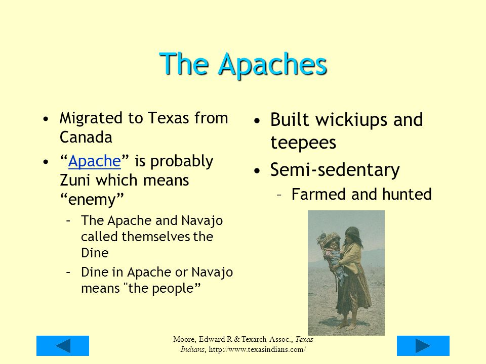 """Moore, Edward R & Texarch Assoc., Texas Indians, http://www.texasindians.com/ The Apaches Migrated to Texas from Canada """"Apache"""" is probably Zuni whic"""
