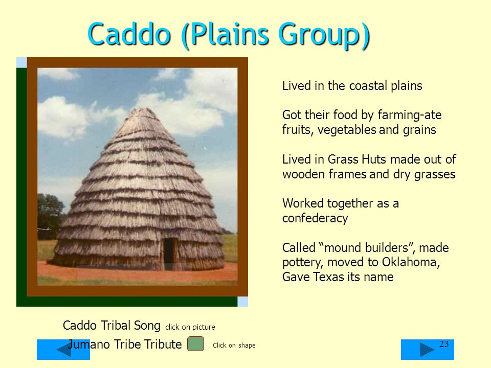 Caddo (Plains Group) Lived in the coastal plains Got their food by farming-ate fruits, vegetables and grains Lived in Grass Huts made out of wooden fr