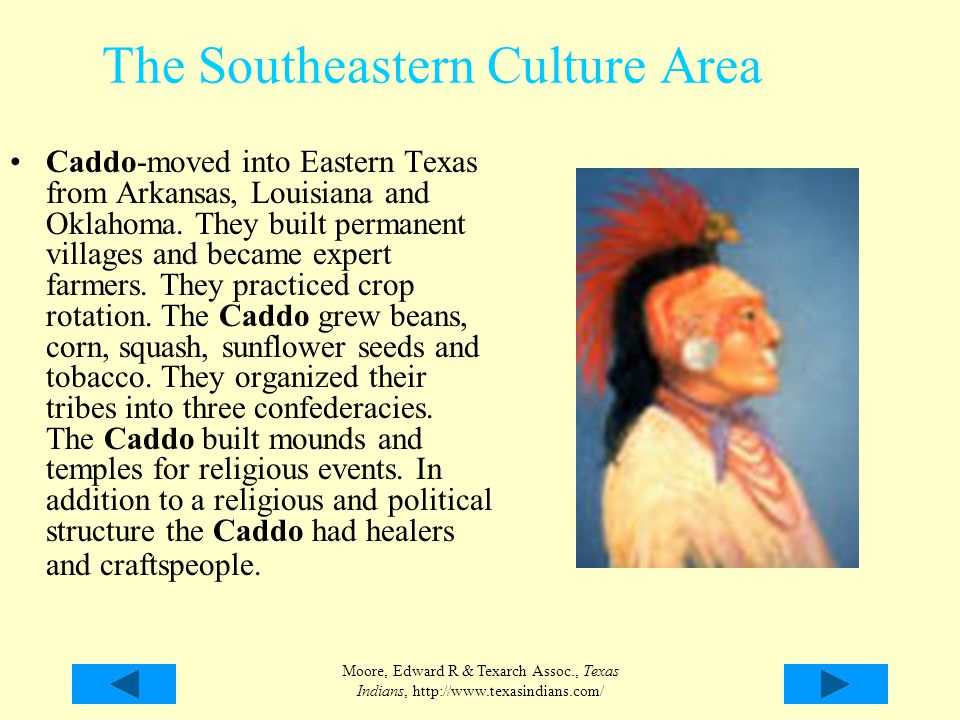 Moore, Edward R & Texarch Assoc., Texas Indians, http://www.texasindians.com/ The Southeastern Culture Area Caddo-moved into Eastern Texas from Arkans
