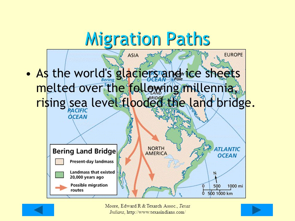 Moore, Edward R & Texarch Assoc., Texas Indians, http://www.texasindians.com/ Migration Paths As the world's glaciers and ice sheets melted over the f