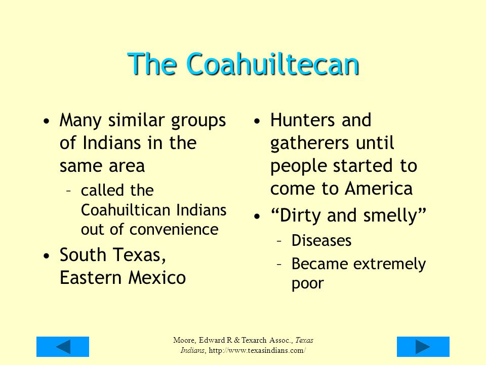 Moore, Edward R & Texarch Assoc., Texas Indians, http://www.texasindians.com/ The Coahuiltecan Many similar groups of Indians in the same area –called