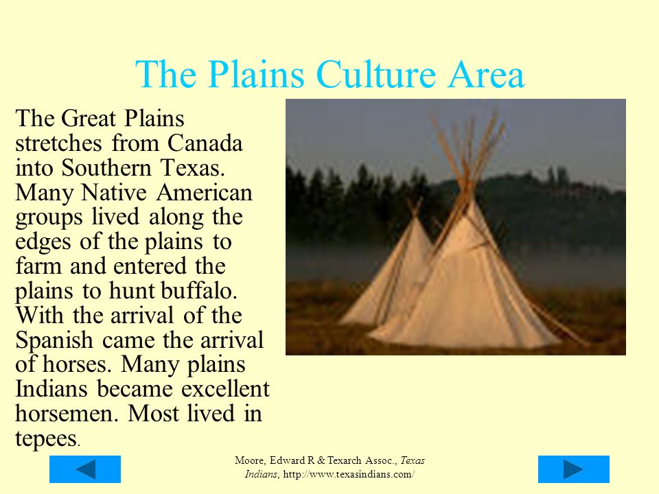 The Plains Culture Area The Great Plains stretches from Canada into Southern Texas. Many Native American groups lived along the edges of the plains to