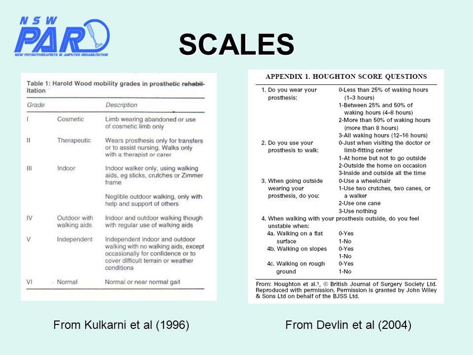 SCALES From Devlin et al (2004)From Kulkarni et al (1996)